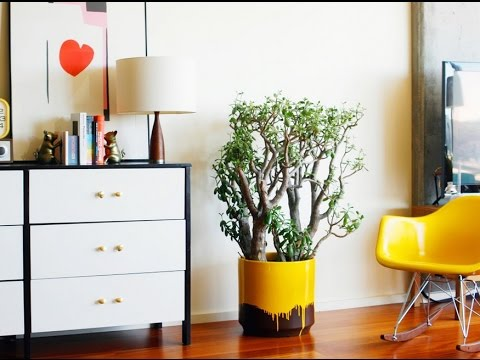 decoracion lowcost con maceteros originales