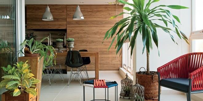 Macetas y plantas en decoracion hoy lowcost for Decoracion de plantas en macetas
