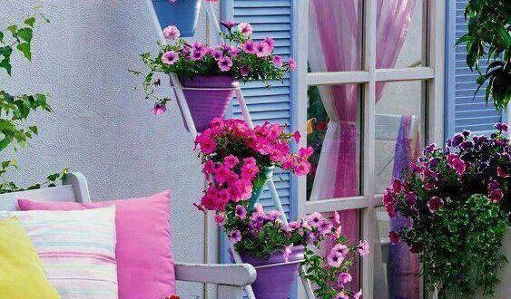 Decorar terrazas con flores hoy lowcost - Como decorar una terraza con plantas ...