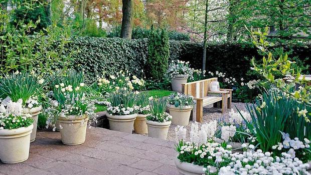 diseño de jardines con plantas y flores