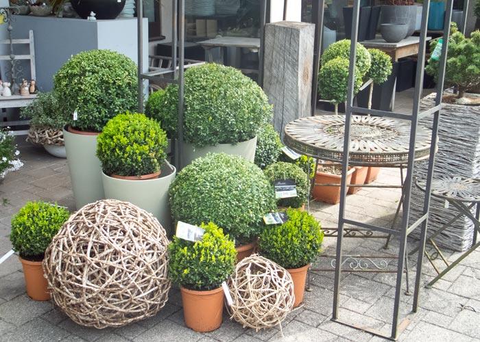diseño terrazas con macetas