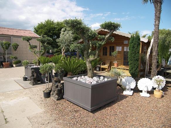 diseño jardin sencillos