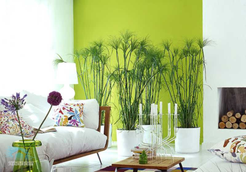 naturaleza en diseño de interiores