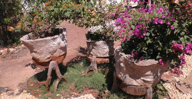 Macetas rusticas decoracion jardin hoy lowcost for Decoracion jardin macetas