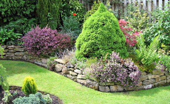 arbustos jardines